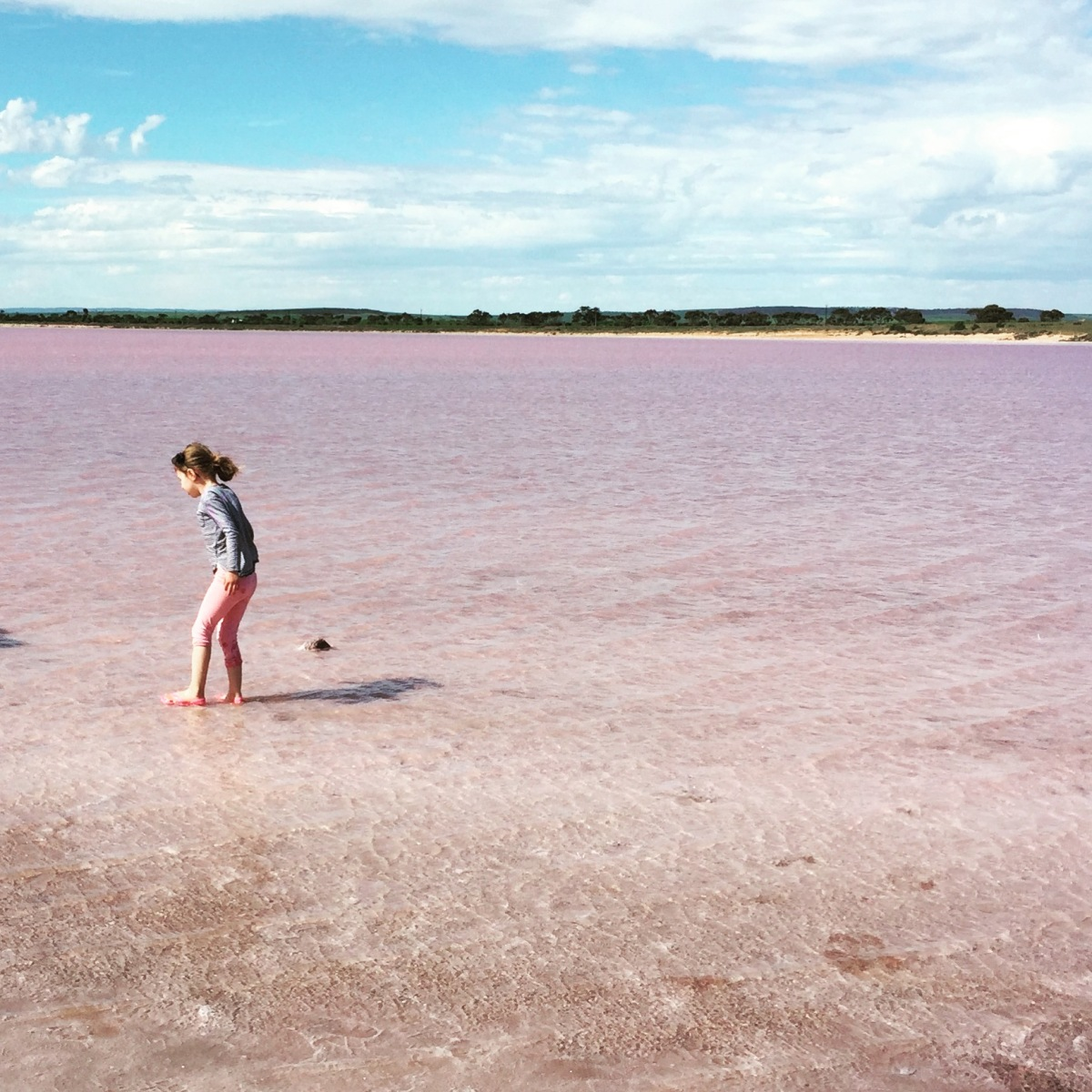 Lake Bumbunga, SA ~ The Pink Lake with kids